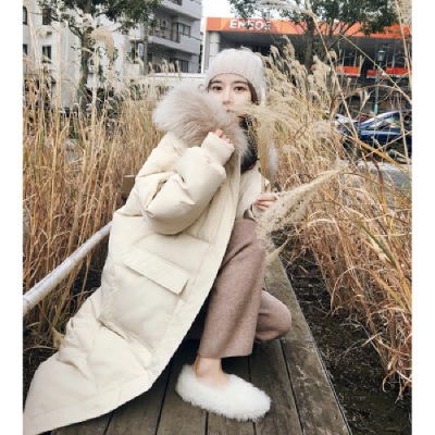 管網圖 張貝貝2019羽絨服女大毛領設計感女小眾韓版流行棉服女